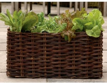 Gardman kweekbak wilgen salades en kruiden