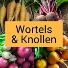 Wortels en knollen icoontje, wortels, bieten, radijzen
